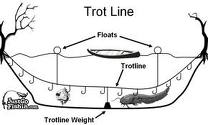 best seo like trotline fishing